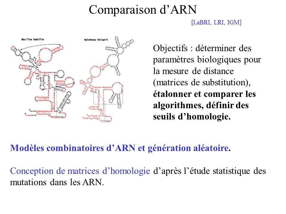 Comparaison d'ARN [LaBRI, LRI, IGM]